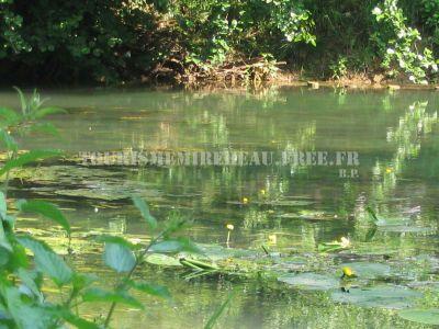 Land von Grundstücke und Wasser