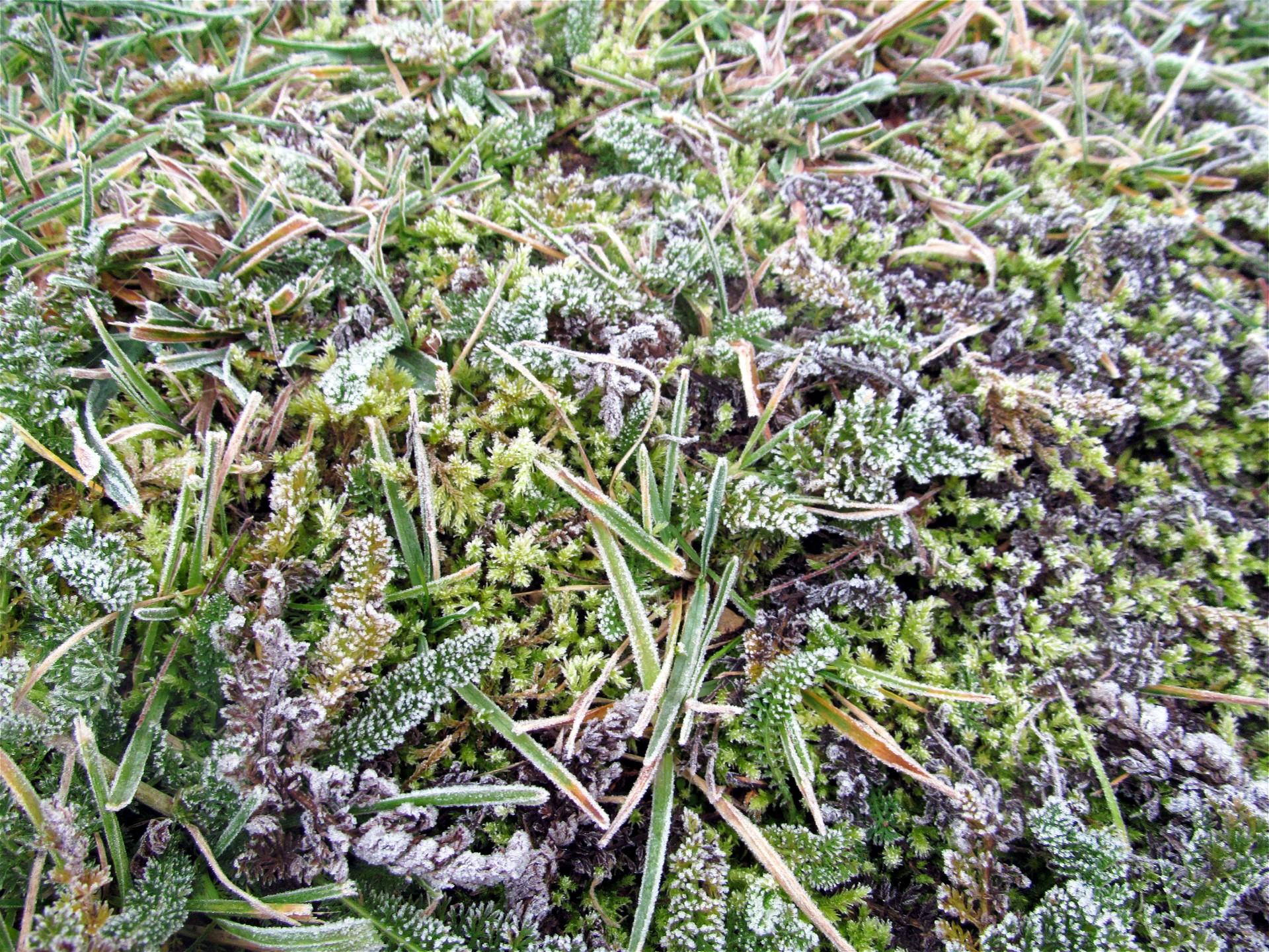 Bientôt l'hiver en Mirebellois et Fontenois ©M. Deline