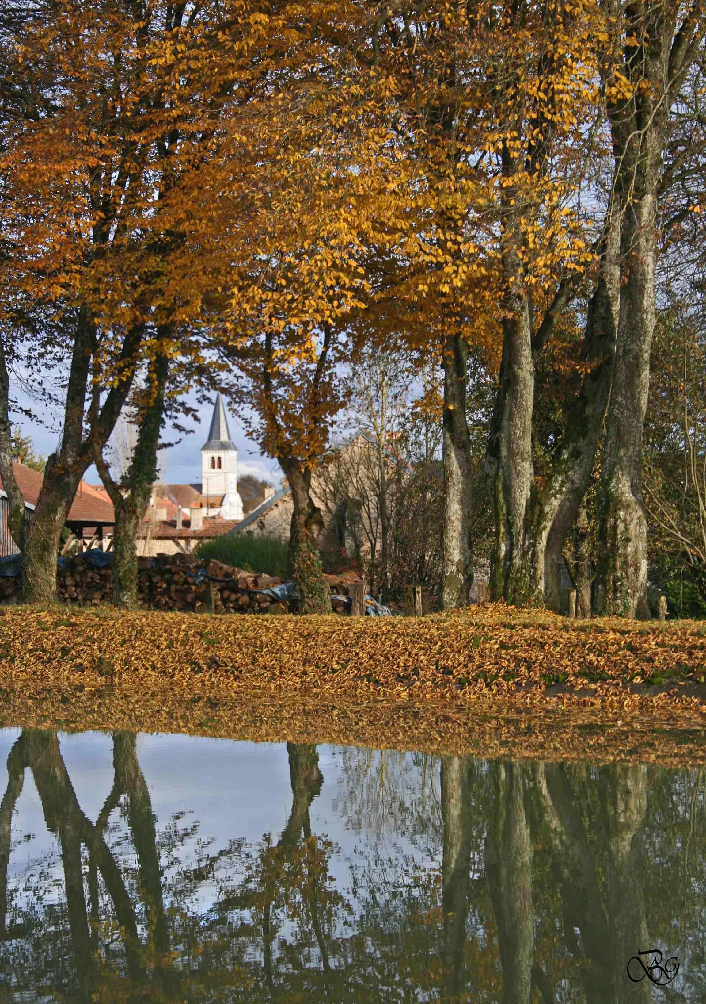 Pouilly-sur-Vingeanne en automne ©G. Berget