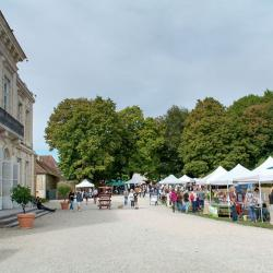 Dans le cadre exceptionnel du parc du Château d'Arcelot