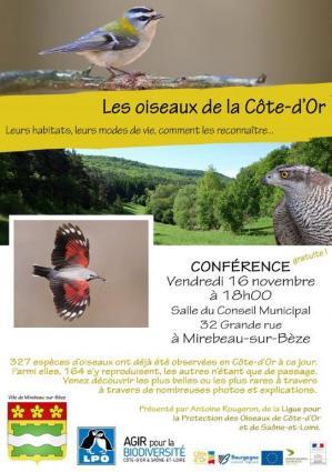 Affiche conference oiseau mir 16 11 18