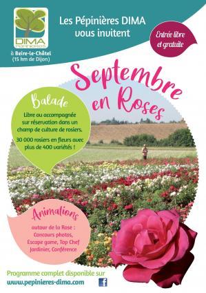 Dima affiche a4 septembre en roses 2020 page 001