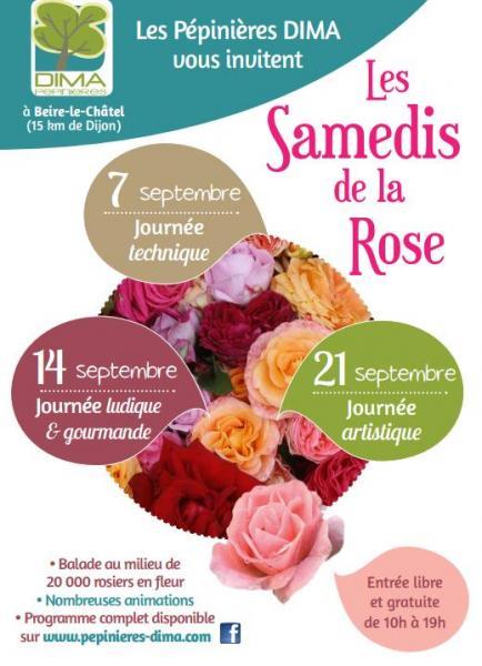 Les samedis de la rose